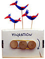 Modern Automata Museum - Workshops - Bird-migration.jpg