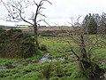Monchanegan Townland - geograph.org.uk - 681485.jpg