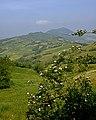 Monte Aldone - panoramio (2).jpg