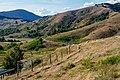Monte Gottero - strada verso pale eoliche - @riccardo.berni.jpg