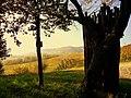 Montebello - panoramio (2).jpg