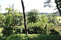 Montfort-l'Amaury le 24 juillet 2012 - 30.jpg