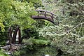 Moon bridge in Japanese Tea Garden (San Francisco) (TK6).JPG