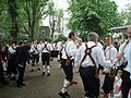 Morris Dancers in the Pavilion Gardens - geograph.org.uk - 1307998.jpg