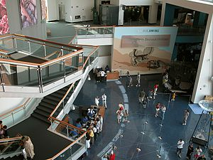 Maryland Science Center - Image: Msc fg 01