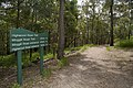 Mt Coot-tha Forest (6971559040).jpg