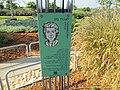 Music park in Rishon Lezion (2).JPG