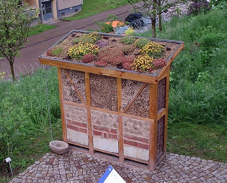 File:NDH INSECT HOTEL.jpg