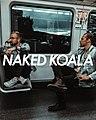 Naked Koala 2.jpg