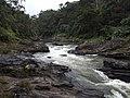 Namorona River in Ranomafana National Park 2013 5.jpg