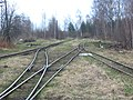 Narrow Gauge Railroad Vasilevsky peat enterprise 2005 (31320860964).jpg