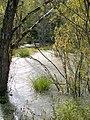 Naturbelassen - panoramio.jpg