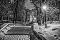 Nature-landscape-winter -Kiev (8222437999).jpg