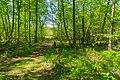 Naturschutzgebiet Emsdettener Venn Lehr und Erlebnispfad 03.jpg