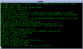NetBSD 6.1 Startup.png