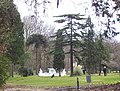Nether Court Grounds - geograph.org.uk - 125403.jpg