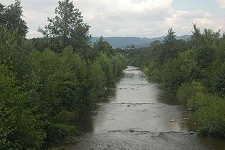 Nitra (river)