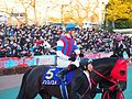 Nonkono Yume and Christophe Lemaire in Tokyo Daishoten Day at Oi racecourse (31149186654).jpg