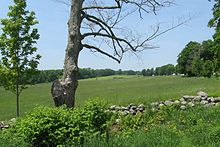 North Common Meadow, Petersham MA.jpg