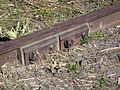 Northwestern Pacific Railroad track detail.JPG