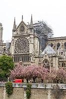 Notre-Dame de Paris - Après l'incendie 05.jpg