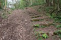 Obsolete Steps to Midsummer Hill - geograph.org.uk - 782622.jpg