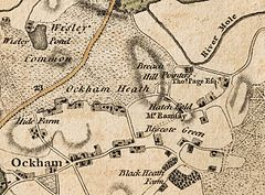 Ockham, Wisley and Hatchford in 1786.jpg
