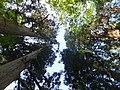 Oguni, Tsuruoka, Yamagata Prefecture 999-7316, Japan - panoramio (9).jpg