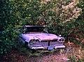 Old-Taxi (3909047409).jpg