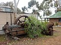 Old Equipment Sprouts a Tree (37566271830).jpg