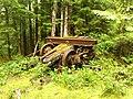 Old Logging Relic - panoramio.jpg