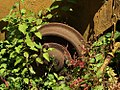 Old wheel (577287919).jpg