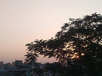 One Fine Evening.jpg