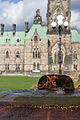 Ottawa, On - Public Grounds of the Parliament Buildings National Historic Site of Canada.jpg