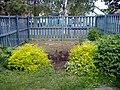 Our beautiful garden (2067351737).jpg