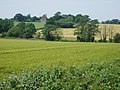 Over fields on a hot summer's day - geograph.org.uk - 21014.jpg