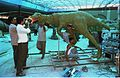 Oviraptor in Progress - Dinosaurs Alive Exhibition - Science City - Calcutta 1995-June 380.JPG