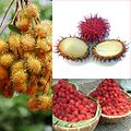 Owoce Rambutan.jpg
