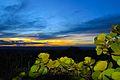 Pôr do Sol entre vegetações I, Morro do pai Inácio.JPG