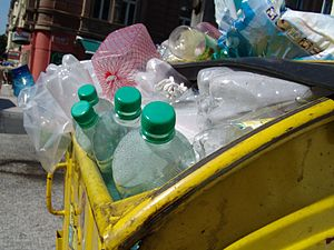 PET bottles in a trash can (Prague)