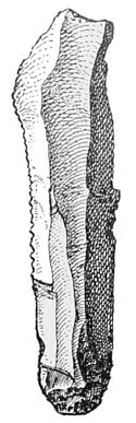 PSM V47 D023 Knife or scraper.jpg