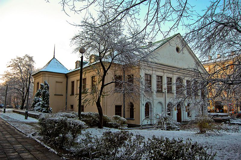 File:Pałac Czartoryskich w Lublinie (2008-11-22).JPG