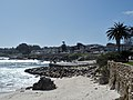 Pacific Grove P4080328.jpg