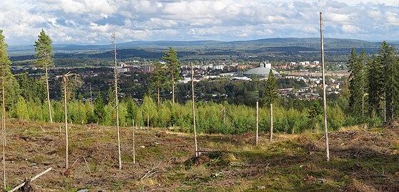 Panorama Borlänge.jpg