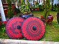 Parasols in Kalaw garden (Myanmar 2013) (11772850263).jpg