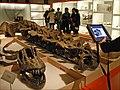Parcours-jeu multimedia Les métiers du musée (Musée des Confluences Erasme, Lyon) (5472239792).jpg