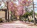 Paris 2, Montparnasse cemetery 2013.jpg