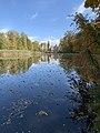Park i staw jesienią.jpg