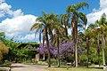 Parque El Prado-Jardín Botánico.JPG