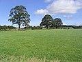 Pasture north of Netherton - geograph.org.uk - 542486.jpg